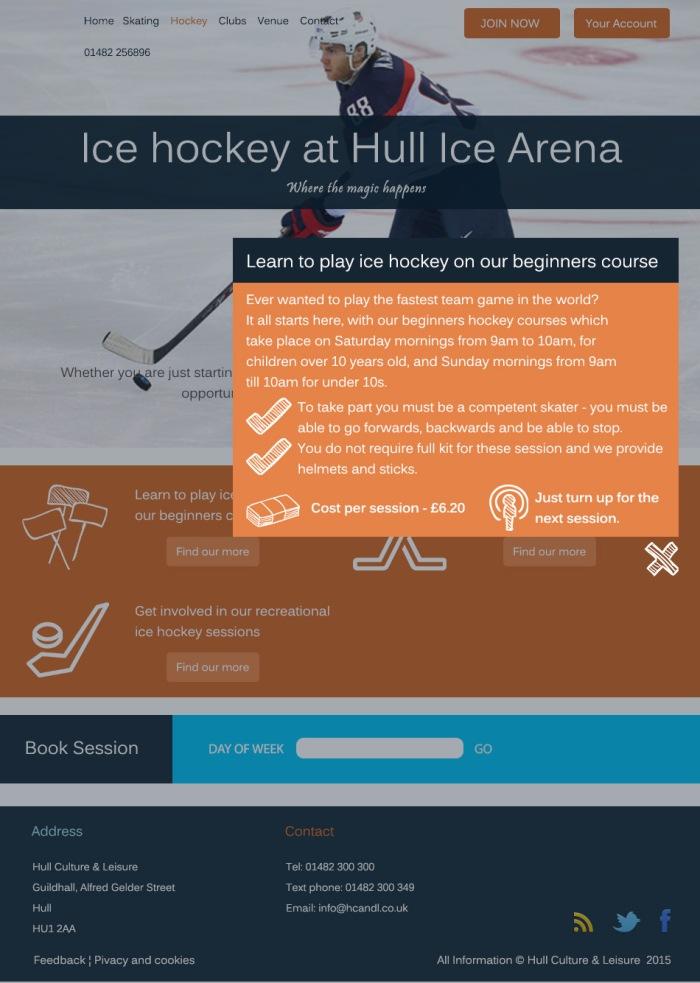 Ice hockey - learn to play ice hockey