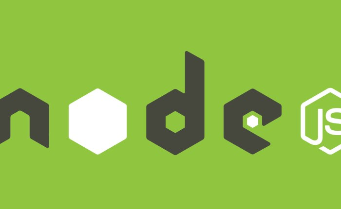 Install Node.js and NPM on Windows